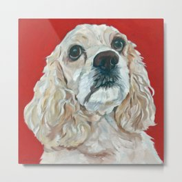 Lola the Cocker Spaniel Metal Print