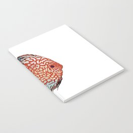 Discus Discusfish Aquarium Cichlid Notebook