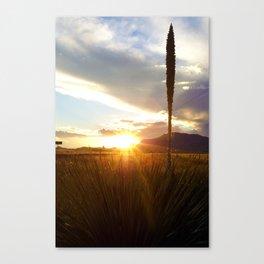 Sunset at Dawn Canvas Print