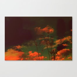 Hallow Ween Canvas Print