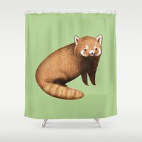 red panda Shower Curtains featuring Red Panda by Sophie Corrigan
