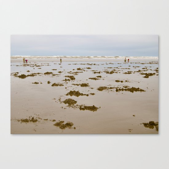 In Search of Razor Clams Canvas Print