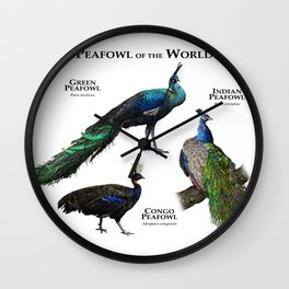 Peafowl of the World Wall Clock