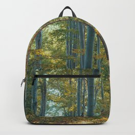morton combs 04 Backpack