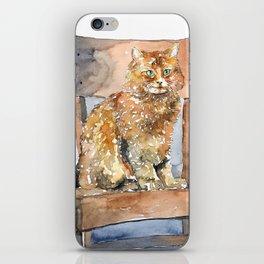CAT#31 iPhone Skin