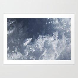 Snow at Yosemite National Park, CA Art Print