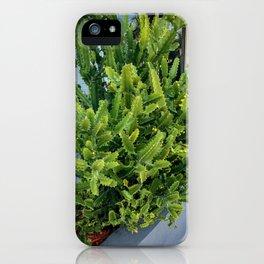 Cactus Green Bright iPhone Case