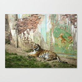 Tigers Play Canvas Print