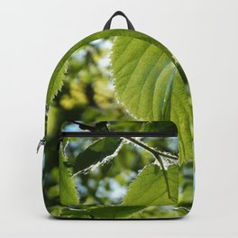 Sunlight Canopy II Backpack