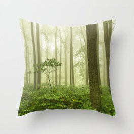 Dreaming of Appalachia - Nature Photography Digital Landscape Throw Pillow
