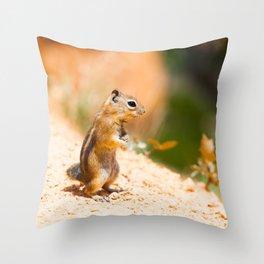 Tired Chipmunk Throw Pillow