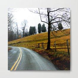 Wnding Road Metal Print
