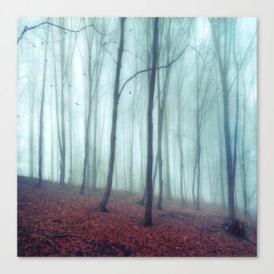 No Noize - Silent Forest Canvas Print