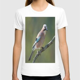 Eurasian Jay Garrulus Glandarius T-shirt