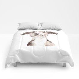Jake Comforters