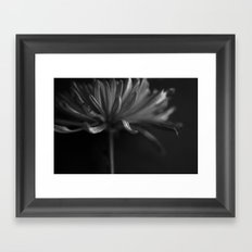 Secret Light no.2 Framed Art Print