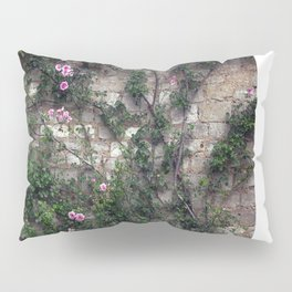 Wall Roses Pillow Sham