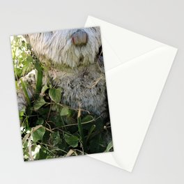 memoriam Stationery Cards