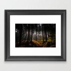 Occlude Framed Art Print