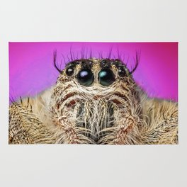 Peeking Tarantula Rug