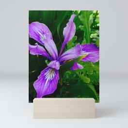 Wild Purple Iris Mini Art Print