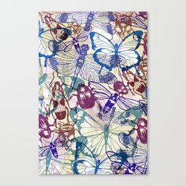 butterflies and bugs Canvas Print