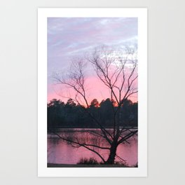 CAROLINA SUN SET Art Print