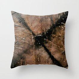 Chiastolite Throw Pillow
