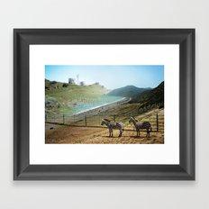 Seabras Framed Art Print