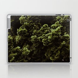 The Moss Pattern (Color) Laptop & iPad Skin