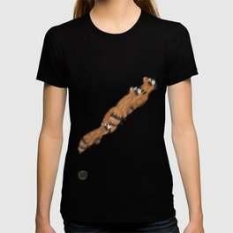 Raccoon Series: Out on the Town T-shirt