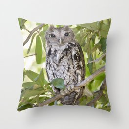 Screech Owl Throw Pillow