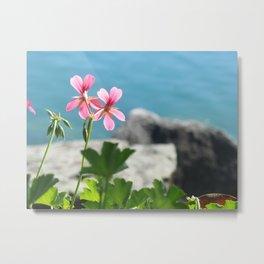 Lakeside Flowers I Metal Print