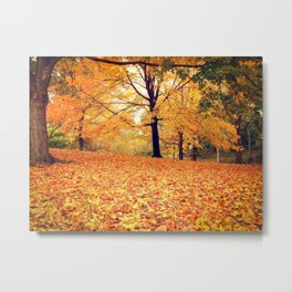 New York City Autumn Leaves Metal Print