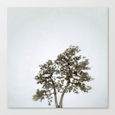 Tree #05 Canvas Print