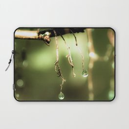 Spring Mist Laptop Sleeve