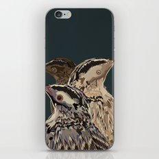 Digital Watercolor Birds iPhone & iPod Skin