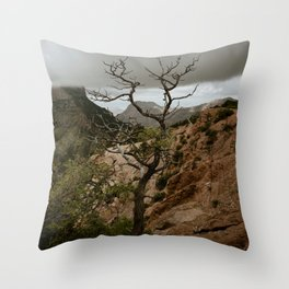 Colorful Mountaintop View with Withered Tree - Big Bend Throw Pillow