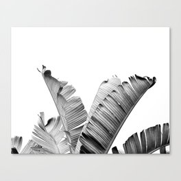 TROPICAL VIBE - black and white Canvas Print