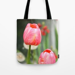 Summer sweet Tote Bag