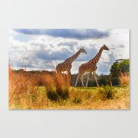 giraffes Canvas Prints featuring Giraffes by Photography by Terrance