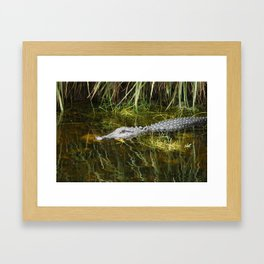 Sitting Here And Wait Framed Art Print