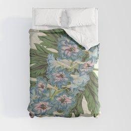 Delphinium Wseo Coelestinum Vintage Botanical Floral Flower Plant Scientific Comforters