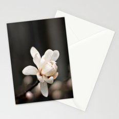 White Magnolia Stationery Cards