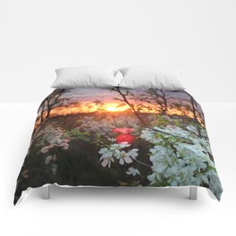 Spring Blossoms Sunset Comforters