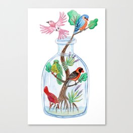 Birds in a Bottle Watercolor Painting Canvas Print