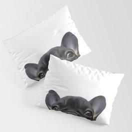 French Bulldog Pillow Sham