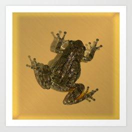 Little Suck Frog Art Print