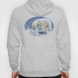 A polar bear at the water Hoody