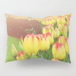 Yellow Red Tulips Pillow Sham